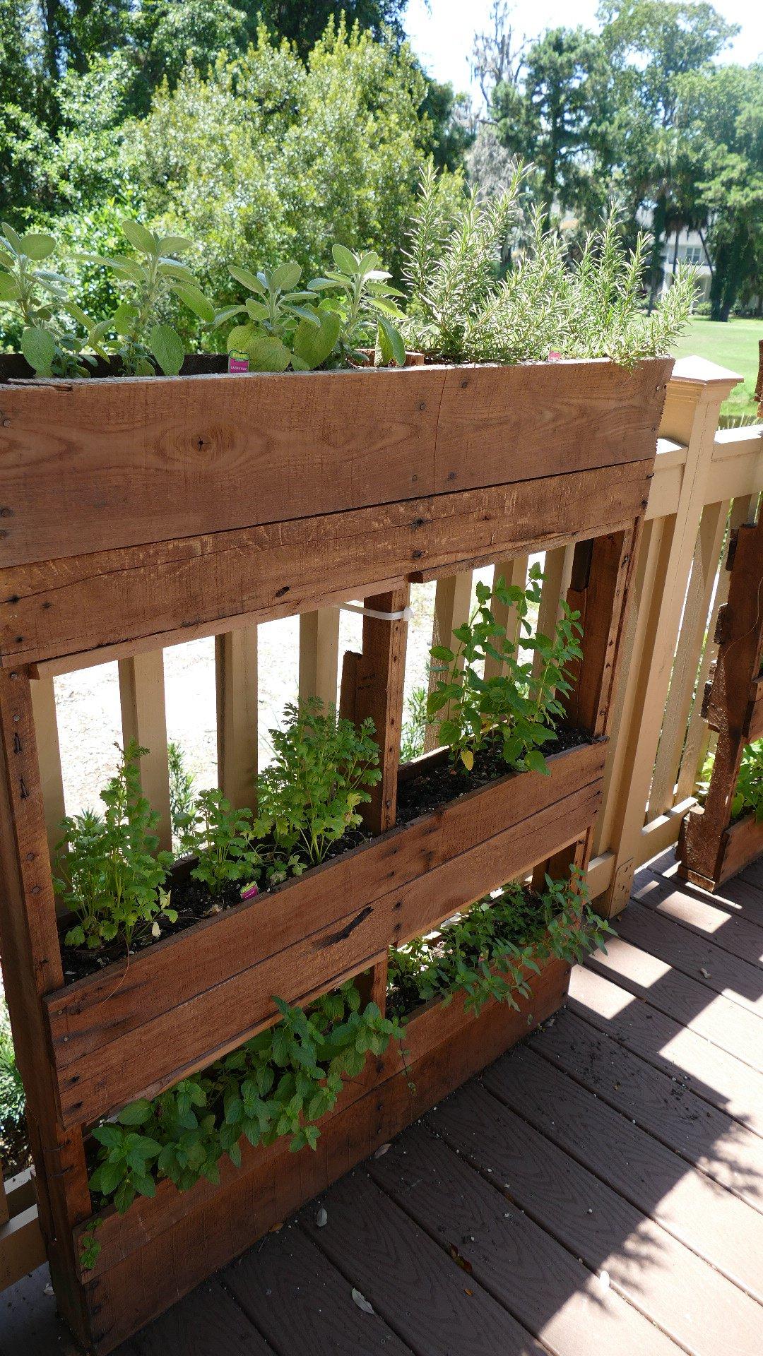 H3 Herb Garden